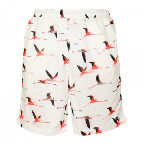 Шорты Flamingo Mall Shorts