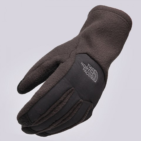 Denali Etip Glove The North Face