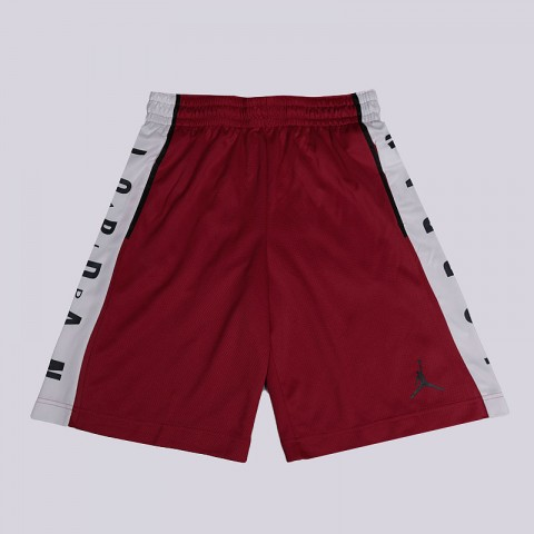 Шорты Jordan Rise Graphic Basketball Shorts