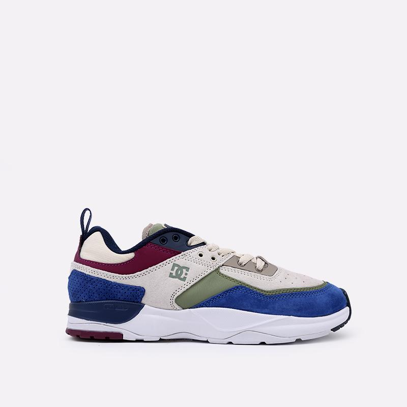 мужские разноцветные  кроссовки dc shoes e. tribeka se ADYS700142-xbwg-xbwg - цена, описание, фото 1