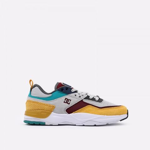 мужские разноцветные  кроссовки dc shoes e. tribeka se ADYS700142-xsky-xsky - цена, описание, фото 1